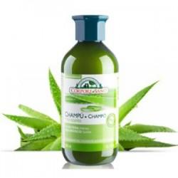 Champu Hidratante Aloe Corpore de Corpore Sano