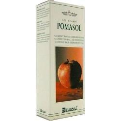 CHAMPU POMASOL DERMOPROTEC (FUNGISOL)250ml