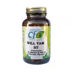 Will Yam 60Cap Cfn de CFN