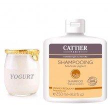 Champú Yogur 250ml- Uso Frecuente - CATTIER